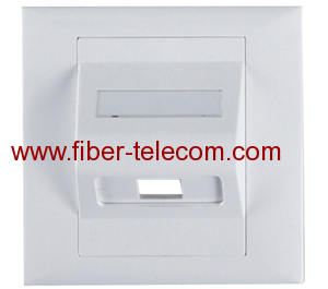 Faceplate for Fiber Optic Adaptor
